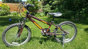 Norco Triumph gear bike - great condition