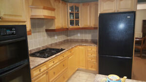 Kitchen Cabinets - Solid Maple Doors (used)