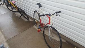 road bike/fixie