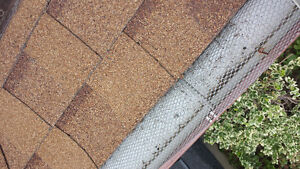 Eavestrough Cleaning/Fall Clean-ups! London Ontario image 7