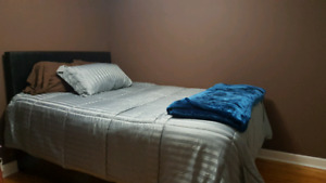 Weekly Room Rental