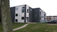 RENOVATED BRIGHT APARTMENT 1 BLOCK FROM NAIT