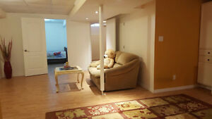 Fully renovated 2 bedroom basement apartment in Richmond Hill