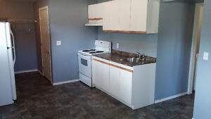 Daylight suite 1 bedroom available January 1st