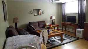 ONE BEDROOM APARTMENT  FURNISHED