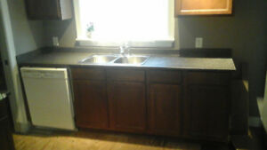 Kitchen cupboards & dishwasher