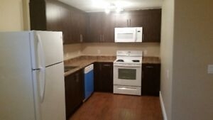 2 Bedroom 2 Washroom legal basement for rent from FEB01 in PARSO