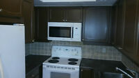 Beautiful 2 BR, Corner Unit Condo In Yonge/Finch For Rent !!!!