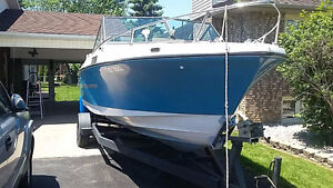 Excellent condition 1979 Silverline Boat 22'  with trailer