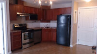 Spruce Grove new 2 bedroom available immediately