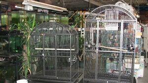 BIRD CAGES Windsor Region Ontario image 5