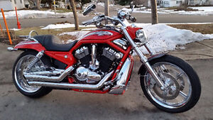 Selling my HD Vrod asking $5500 firm