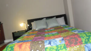 large furnished room for rent to a student or a working person