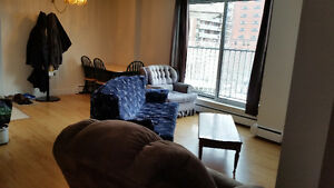 Sublet or Lease Takeover Large One Bedroom Apartment