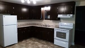 Large 2 Bedroom Newly Renovated