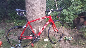 Specialized Carbon Tarmac Expert (Red)  56cm Ultegra Groupo