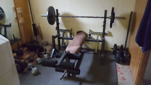 Bench and olympic weight set