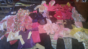 Large lot of baby girl 12 month clothes