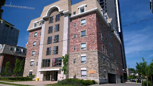 1 Room available in a 5 bedroom apt - 1/2 months - Dec/Jan only Kitchener / Waterloo Kitchener Area image 3
