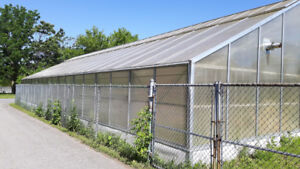Greenhouse Structure and Poly Panels