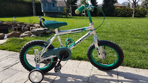 """Boys 14"""" Bike for sale with Training Wheels"""