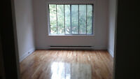 4.5 large  renovated