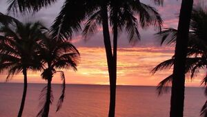 The Sunshine Coast of Big Island of Hawaii - 2 weeks available
