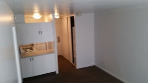Grand/spacious 3 1/2 apartment in downtown