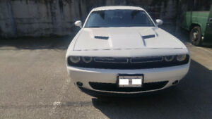 White 2015 Challenger, Low KMs, SXT+Plus for Sale by Owner