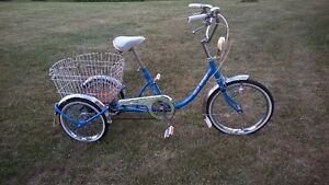 Adult tricycle, mint