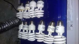Lot of 10 cfl bulbs 13w 120v e26/27 base