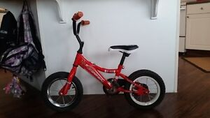 Bicycle (Age 3-6)