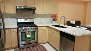 Counter top ( Granite /Quartz Top) 416-901-6093
