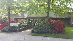 Lovely Richmond Condo Fully Renovated - Great Location