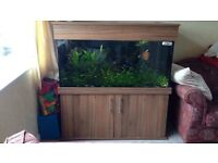 Fish tank with stand and light quick sale