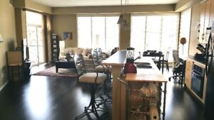 2 Bdr 2 Bth 2 Parkng Downtown Condo