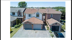 Beautiful Family Home in Innisfil for rent.