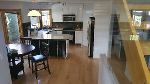 rom for rent in large executive house in Cougar Creek avail now