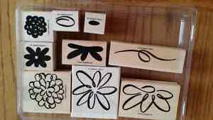 Stampin up bloomin wonderful