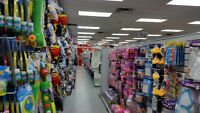 Dollar and Bargain store with great income