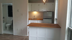 Newly renovated 1 bedrooms in South end. Queen st