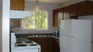 2-Bedroom Renovated Suite with Fenced Back Yard for Rent