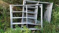 Echafaudages en Acier Galvanisé-Steel Scaffolding
