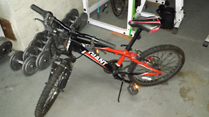 Kids Giant Mountain Bike