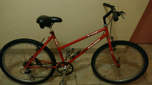 Raleigh Womens Bike Priced to sell