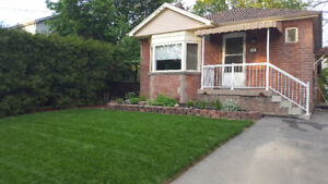 Great Student Rental- Steps to Mohawk