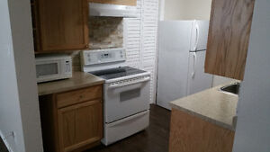 Students! Modern Basement Bachelor Apartment with Free Internet