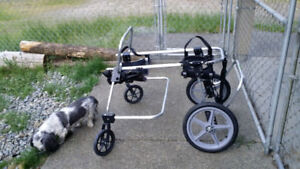 Dog therapeutic cart