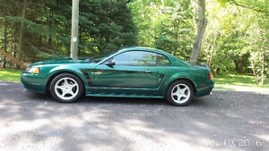 GT- 2000 Ford Mustang- Certified July 13th, Excellent Condition