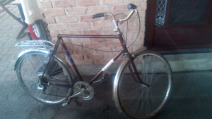 Vintage Fleewing bike '80
